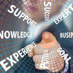 Professionalisierung wissensintensiver Dienstleistungen - Risiken und Gestaltungsoptionen