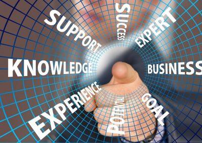 Professionalisierung wissensintensiver Dienstleistungen – Risiken und Gestaltungsoptionen